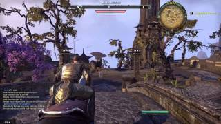 ESO part 10 Chasing chickens