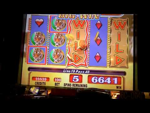 Running Wild Bonus Win At Mt. Airy Casino In The Poconos