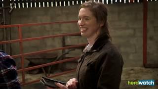 Farm Smart Series: Derek and Jennifer Glenn