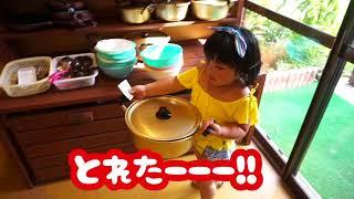 じぃじとばあばの還暦祝いで、みんなでキャンプに来たよ! 初めて淡路島...