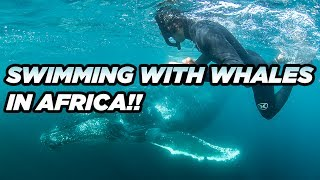 GARRETT LEFT US IN AFRICA!! TO GO CHASE WHALES, SHARKS and SARDINES!!