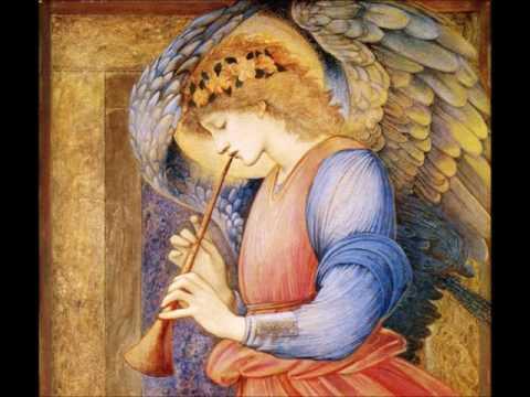 J. S. Bach - Cantatas BWV 80, 30; Mass BWV 236 - T. koopman (Vol.22 CD1)