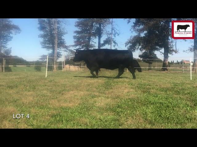 Powell Farms Lot 4