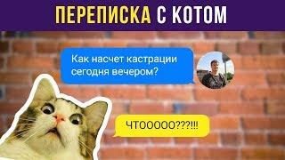 Приколы. Переписка с котом | Мемозг #39