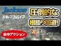 ルアー水中アクション動画【ちぬころバイブ 】【ジャクソン】