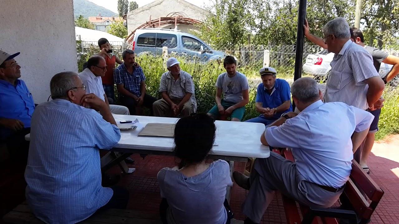 Ayancık Ağaçlı Köyünde Bir Köy Toplantısı -1: Kıbrıs Gazisi Kaptan Talip Yıldız Anısına