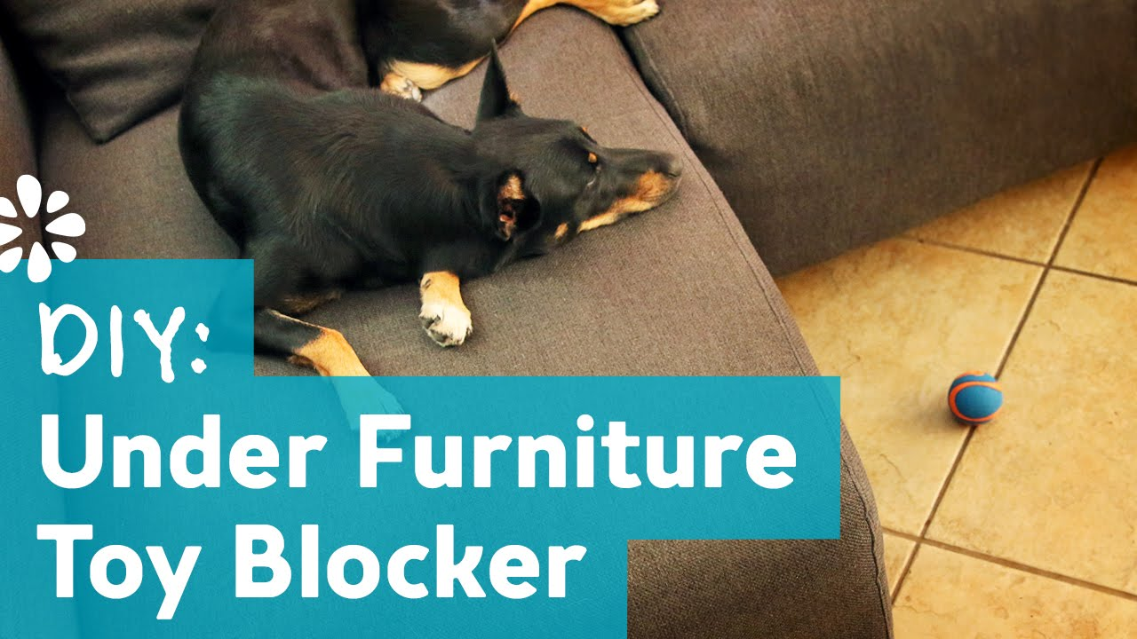 Diy under furniture pet toy blocker youtube diy under furniture pet toy blocker solutioingenieria Images
