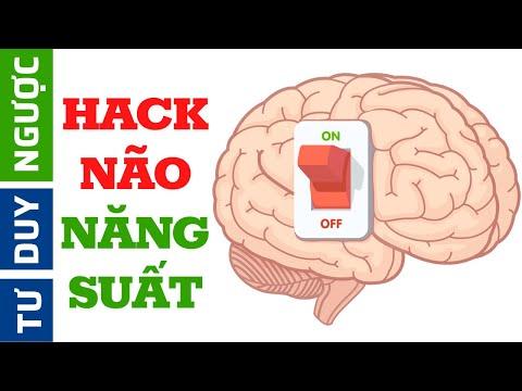 Cách HACK NÃO Học Tập và Cải Thiện 10 lần Năng Suất Làm Việc | Tư Duy Ngược | Thủ thuật hack hay 1