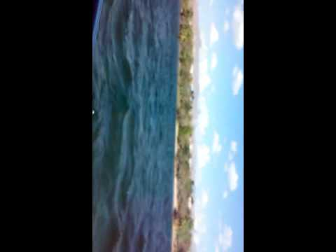 Celebration River Cruise(1)