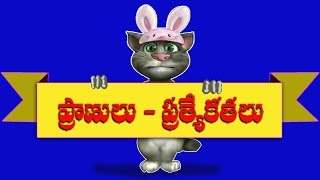Animals-Specialitie ( Telugu General Knowledge Videos-123 )