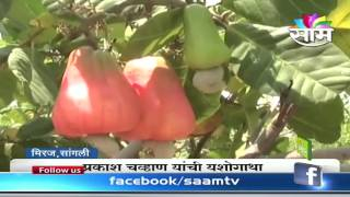 Prakash Chavan s Cashew farming success story