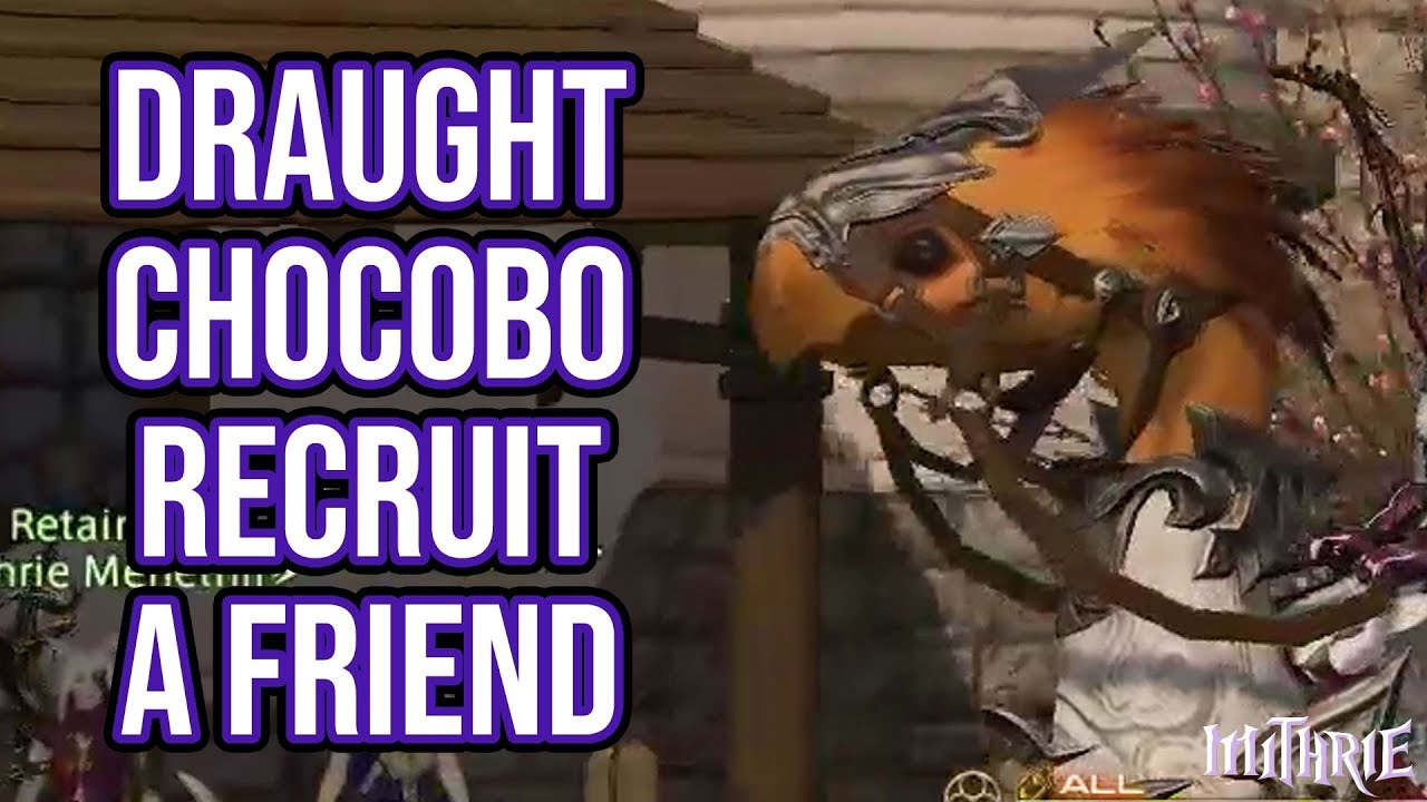 FFXIV 2 57 0635 Recruit A Friend (Draught Chocobo) - Mithrie