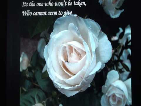 The Rose- Lyrics
