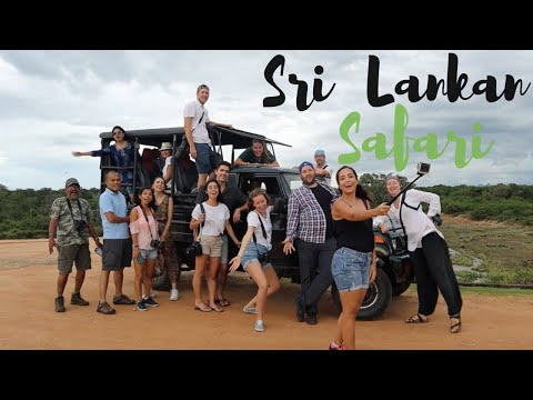 WILD Safari in Yala National Park // Travel in Sri Lanka Vlog