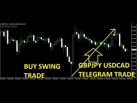 Forex signals street telegram review