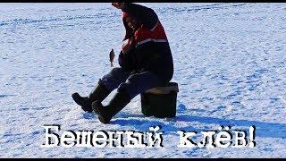 Рыбакам посвящается! Бешеный клёв со льда!