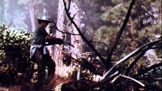 WILDFIRE! - True Story of Firefighters vs. Out of Control Forest Fire