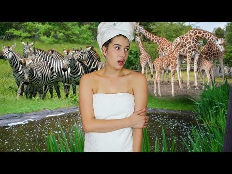 Thumbnail: If I Lived in a Zoo!