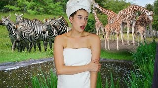 If I Lived in a Zoo!