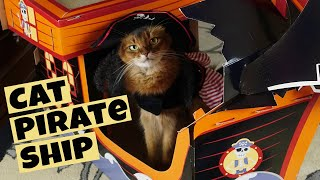 FUNNY PIRATE CAT: Building Target's Pirate Ship Cat Scratcher, Summer Wears Costume