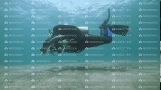 Male scuba divers swimming in deep open water in the ocean.