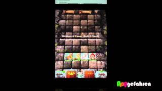 Review: Rune Raiders (iPhone, iPad) by appgefahren.de