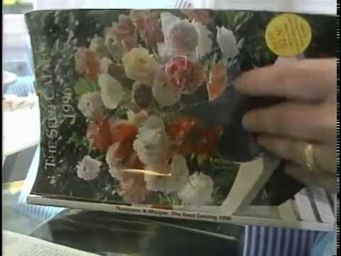 Seed Collection Best Garden Catalogues YouTube