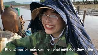 Về quê (xã Hoàng Tân, tx Quảng Yên, tỉnh Quảng Ninh)