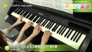 パガニーニによる大練習曲より 第6番 / Franz Liszt : ピアノ(連弾) / 上級