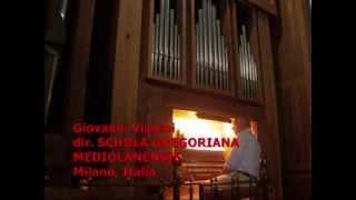 Gregoriano: DA PACEM DOMINE, Giovanni Vianini, Organo e Canto, Milano, It.
