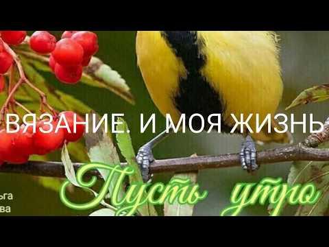 #СП МОДА ДЛЯ НАРОДА@Людмила моё вязание Стартовое видео