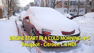 1.6 HDI Engine Start in a Cold Morning -9° Celsius - Peugeot Citroen (EN Sub/CC)