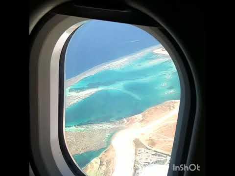 релиза айфона сейшелы вид из салона самолета картинки этого сажают ранние