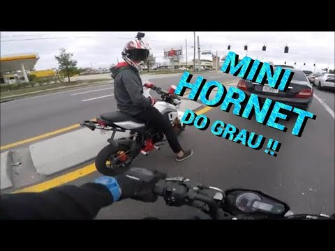 MINI HORNET PRONTA PRO GRAU NO ROLE DE MINI Z1000 | BUW LIFE |