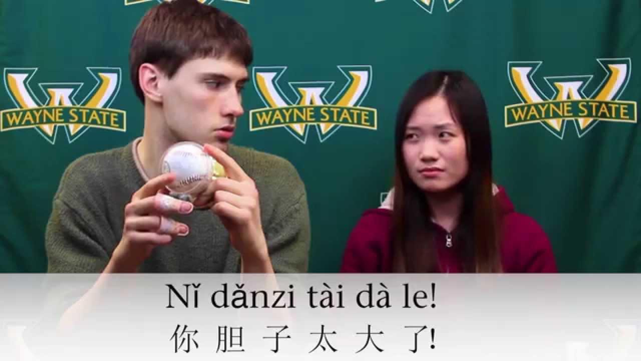 Image result for big gallbladder chinese phrase