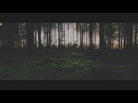 A Bitter End - Quantum (OFFICIAL MUSIC VIDEO)