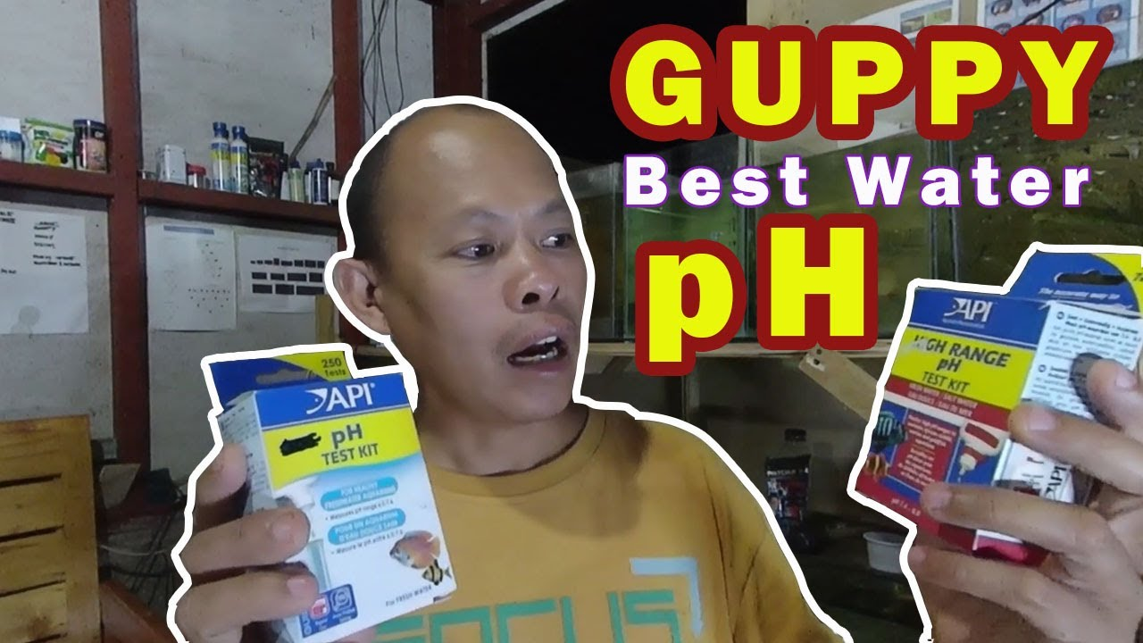 What is the safe water pH for guppy and other ornamental fishes