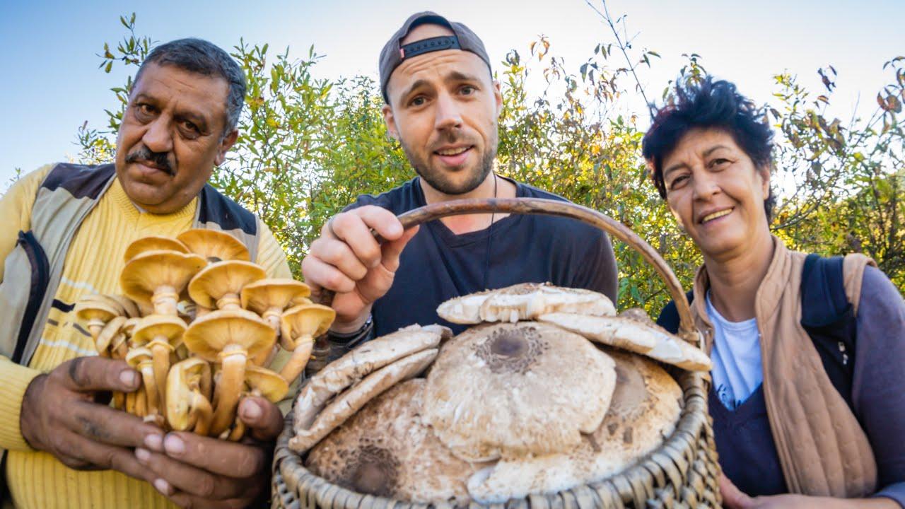 Living with the Mushroom People of Romania
