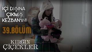 Video Kırgın Çiçekler 39.Bölüm - Güney, Songül'ü affediyor! download MP3, 3GP, MP4, WEBM, AVI, FLV Oktober 2017
