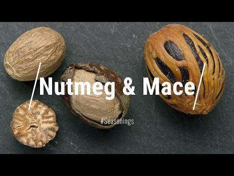 🔵 All About Nutmeg & Mace || Glen & Friends Cooking