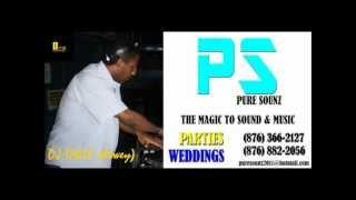 DJ DWIE & PURE SOUNZ..... DANCE & CLUB ULTRAMIX 2012.wmv