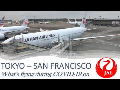 JAPAN AIRLINES LONG HAUL ECONOMY CLASS SERVICE DURING COVID 19