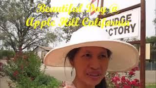 APPLE PICKING & FUN VISIT AT THE APPLE HILL CALIFORNIA