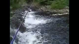 外国の渓流でミャク釣り! Using japanese fishing technique in Canada