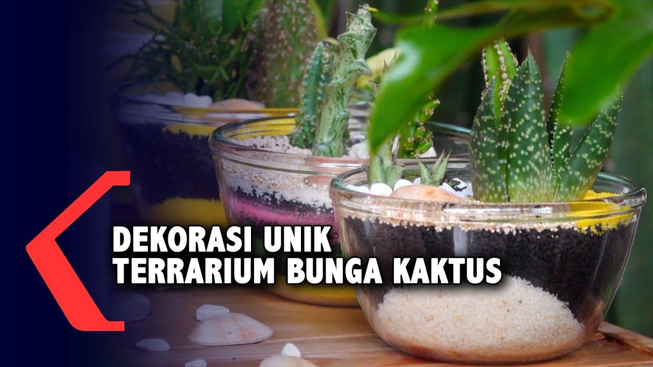 Dekorasi Unik Terrarium Bunga Kaktus Youtube