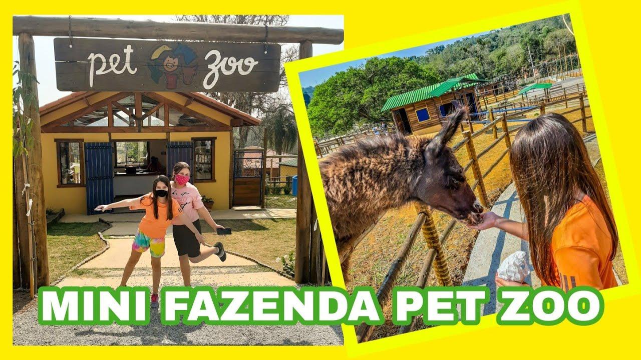 Mini Fazenda Pet Zoo - YouTube