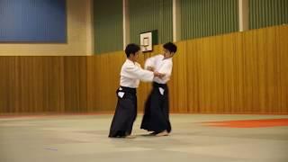Aikido demo - Norwegian Aikido 40 year anniversary