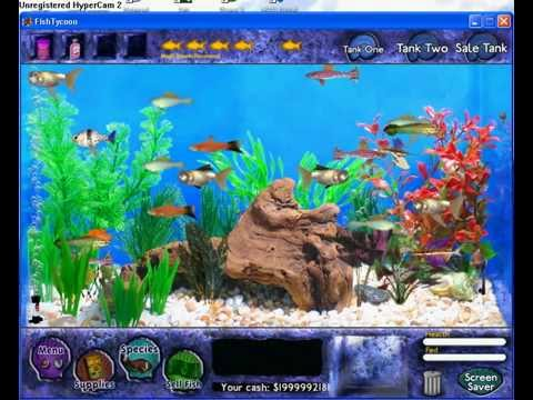 Fish tycoon all magic fish doovi for Fish tycoon 2