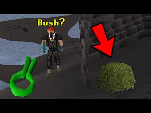Runescape Sparc Mac's Bush Human Bombing Adventures!