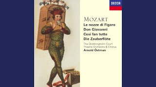 "Mozart: Die Zauberflöte, K.620 / Act 2 - ""Der Hölle Rache kocht in meinem Herze"""